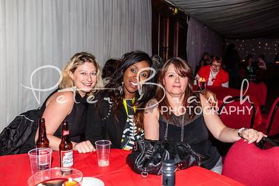 brent-town-hall-party 041