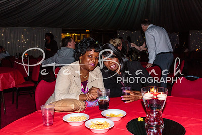 brent-town-hall-party 048