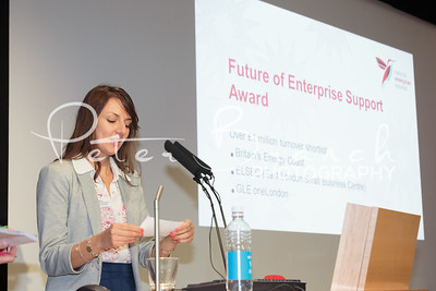 NEN 2013 - National Enterprise Network - 7262