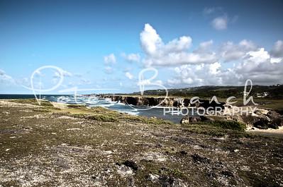 River Bay - Landscape -_