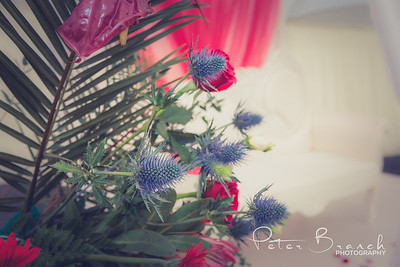 wedding -  6609