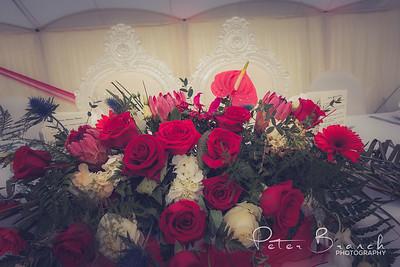 wedding -  6603