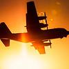 Lockheed C-130H Hercules, Swedish Air Force - 842