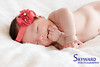 Scarlett Pucci, 7 Weeks, 10th December 2016