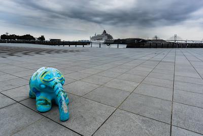 elephant - ぞー
