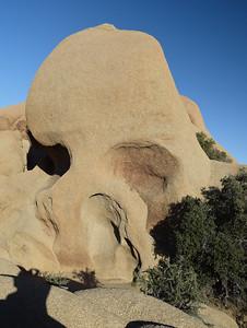 Skull Rock | Joshua Tree National Park