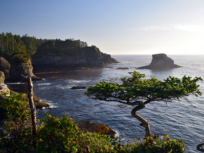 Cape Flattery | Olympic National Park