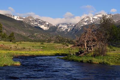 Big Thompson River   Rocky Mountain