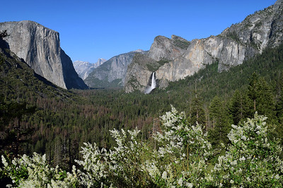 Tunnel View | Yosemite National Park
