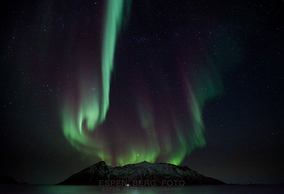 Sessøya
