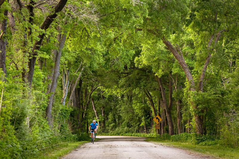 Dreamy Bike Ride
