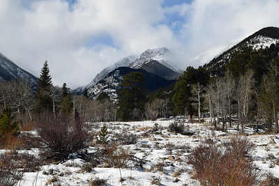 Horseshoe Park | Rocky Mountain NP