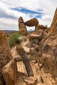 Balanced Rock and Desert Vegetation