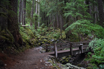 Sol Duc Falls Trail | Olympic National Park