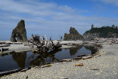 Ruby Beach | Olympic National Park