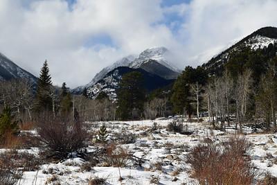 Horseshoe Park | Rocky Mountain NP