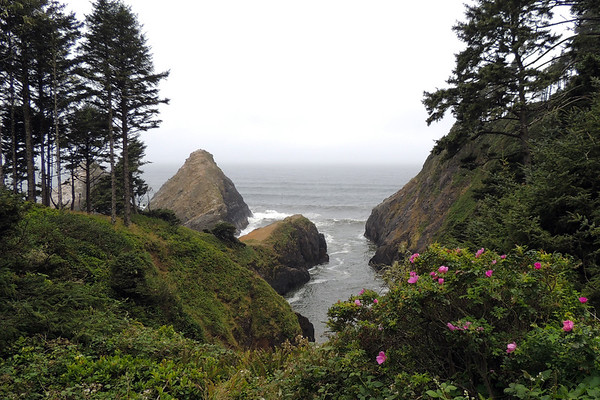Hecita Head  | Oregon Coast