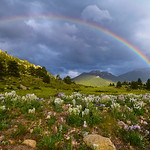 """After The Storm"" 