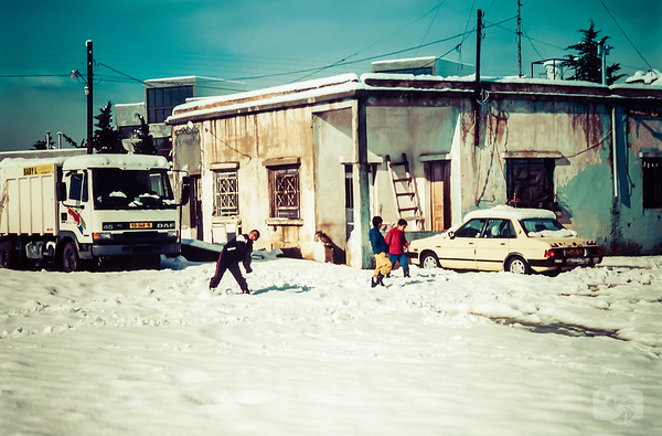 Snowball Fight with Palestinian Boys