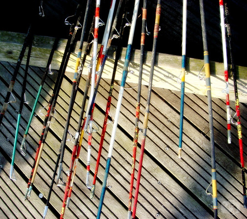 Fishing Rods at Captree