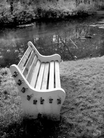 Park bench at Belmont Lake