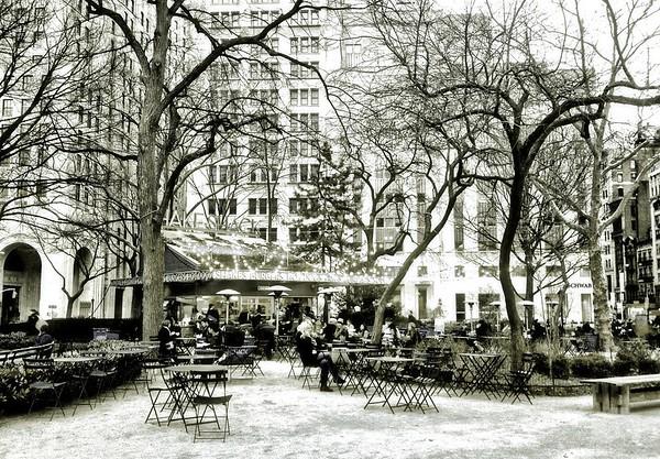 Shake Shack - Madison Square Park