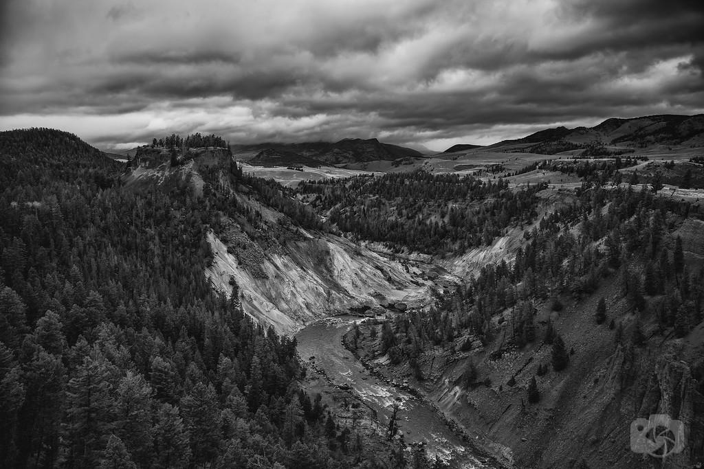 Montana--XL.jpg