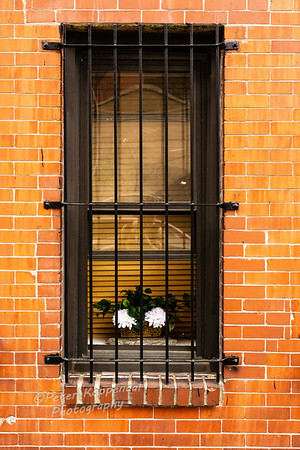 Window, Hoboken