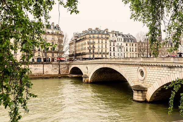 Seine Bridge, Paris