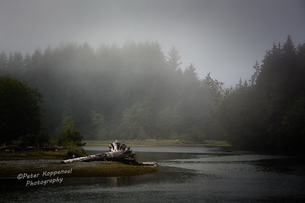Port Renfrew Inlet II