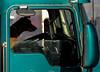 a_pups_in_trucks_031409_1