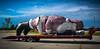 Santa_On__A_Truck_080114_LR-4