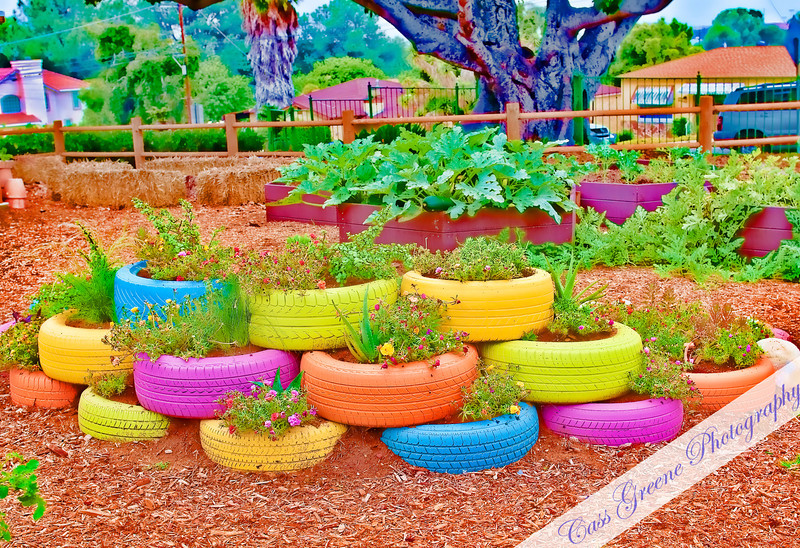 Old tires for the garden.... add a little paint.