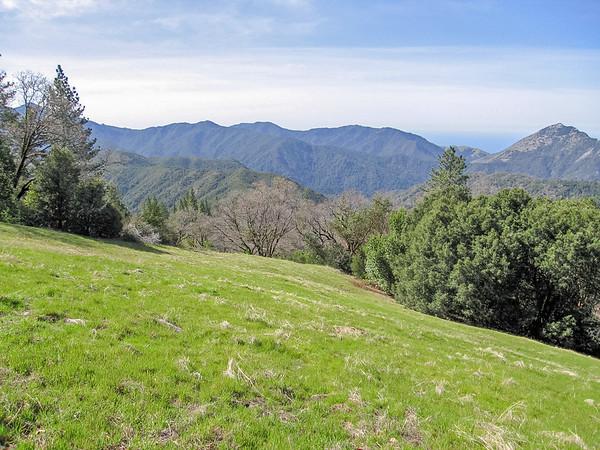 High meadow -- looking across the Little Sur R. basin.