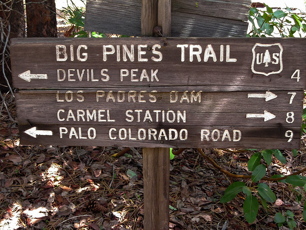 Marker at the at the Big Pines / Pat Springs lateral trail.