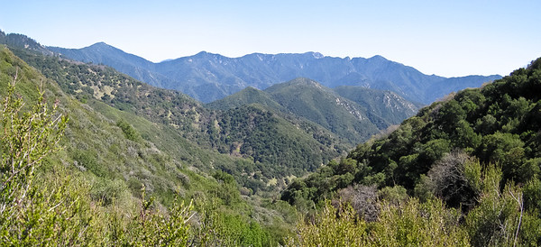 View near saddle: Uncle Sam Mtn (L) to Ventana Dbl Cone (R).
