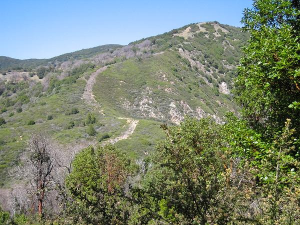 Devil's Peak -- Thankfully, the old fire break is no longer the trail.