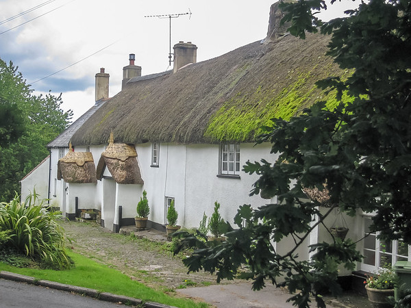 A nice thatched roof on this building in North Bovey