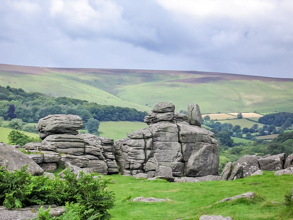 The broader landscape from up top of Hound Tor in Dartmoor.  Ubiquitous ferns at left.  (July 9)