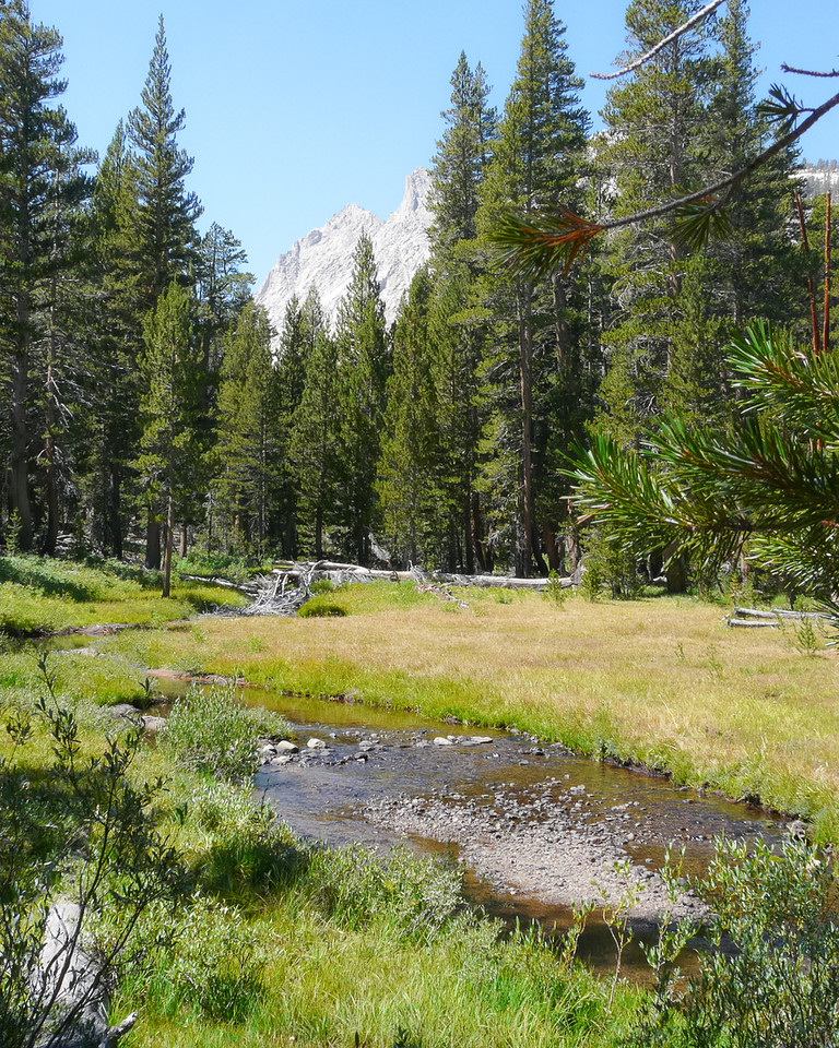 The meadow near where the trail reaches and crosses Lost Canyon Creek.