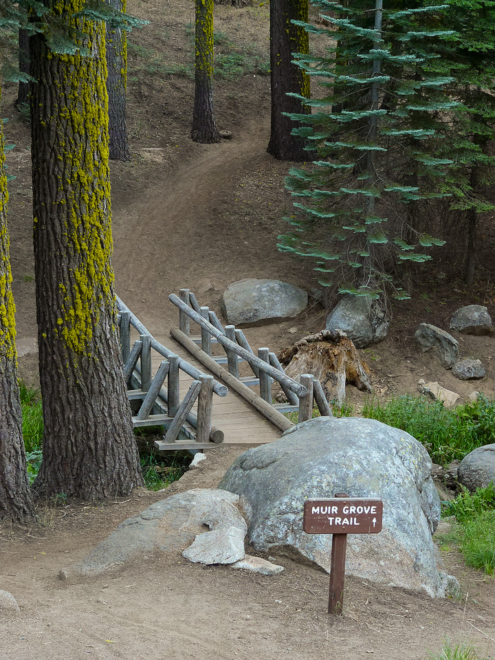 I camped at Dorst Creek.  The nice enough, if huge, campground had this trail head, a few deer, and one bear that I saw only at a distance.