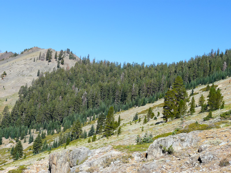 One last open section.  The notch is the pass, Timber Gap.