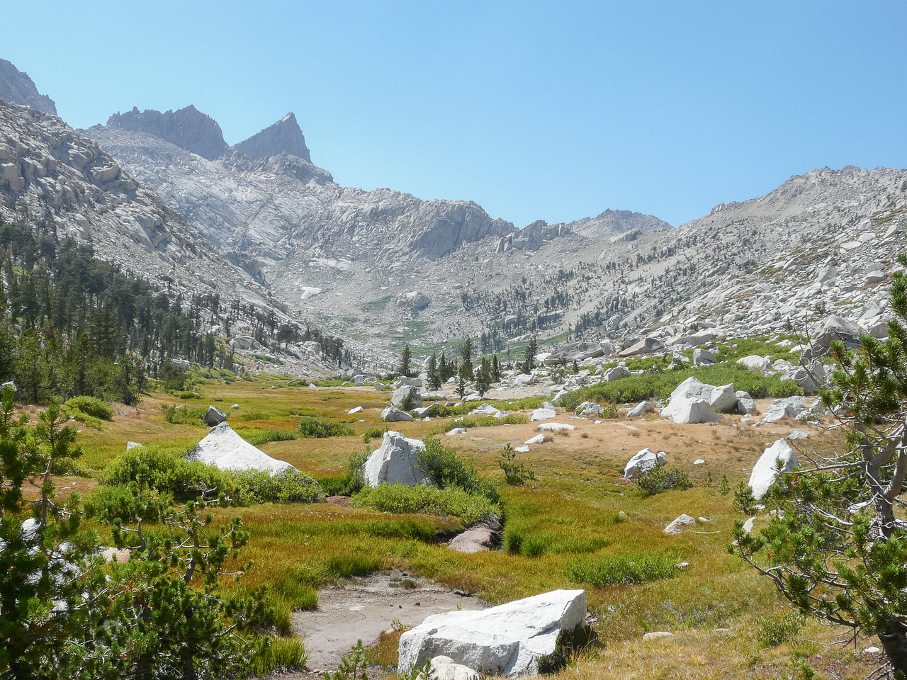 At 10,200', after about 600 feet of climbing, the forest gave way to a long, rocky, and windy meadow.