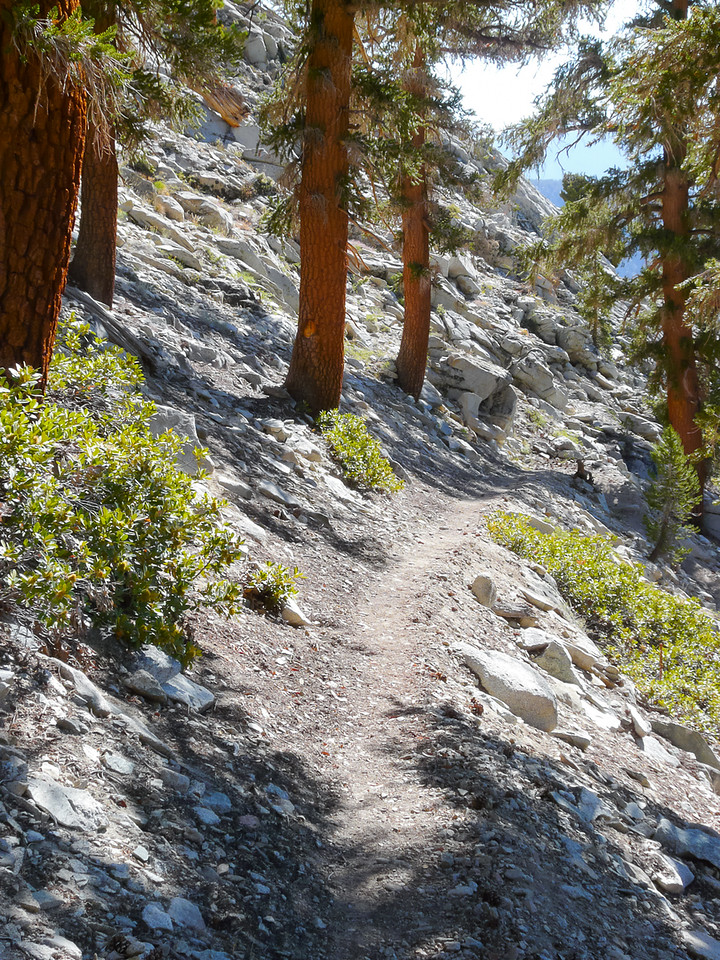 The trail down is one of those classic rocky Sierra Nevada hillside trails ...