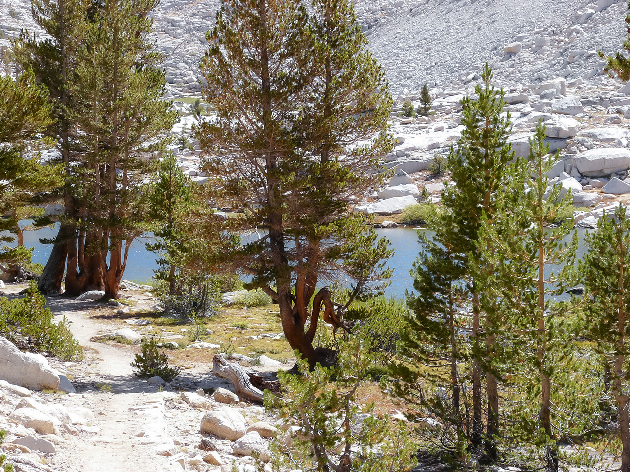 Timberline Lake -- I stopped for about 45 min here.