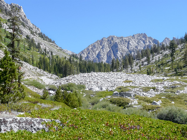 Kearsarge Pinnacles ahead. Vidette Meadow is close.