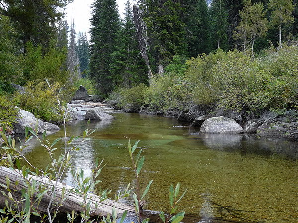 Bubbs Creek by camp.
