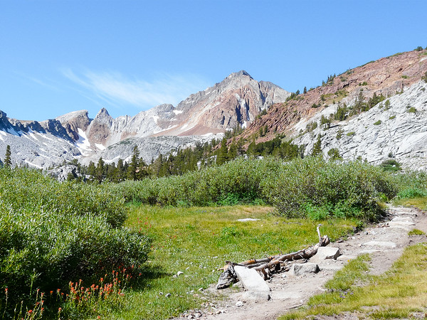 Monday, August 3.  By mid-morning I'm above 10,000' and into open meadows