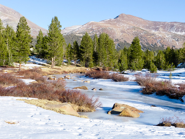 Up towards Tioga Pass now.  The Dana Fork was frozen but Mt. Gibbs had less snow than I saw in Septermber.