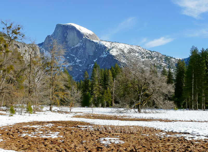 After lunch at the lodge, Stop #7: Cook's Meadow and Yosemite Falls.